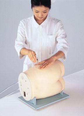 Simulator für Intramuskuläre Injektion Lebensnahes Üben durch Spezialkunststoff